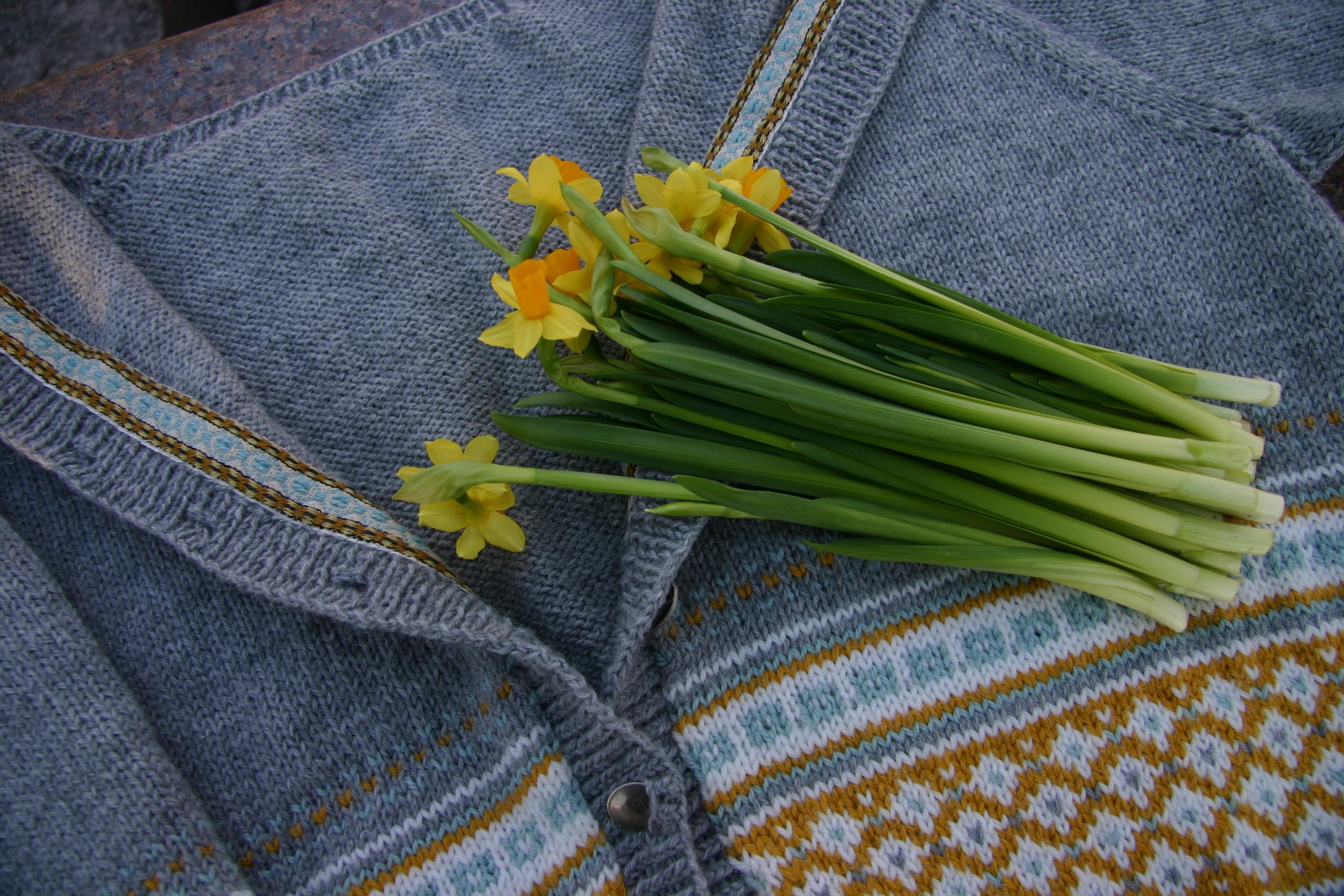 Bli med på Narciss-samstrikk!