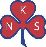 NFS´s logo